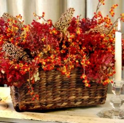 Most Of Dried Flowers