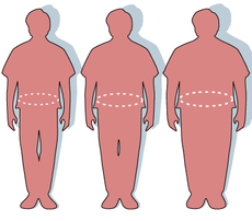 Normal. Overweight. Obese.