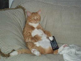 """This is to show what I mean by """"sitting like a human""""."""