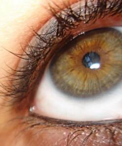 Eczema on Eyelids