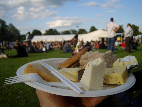 A traditional English Ploughman's at the local agricultural show.