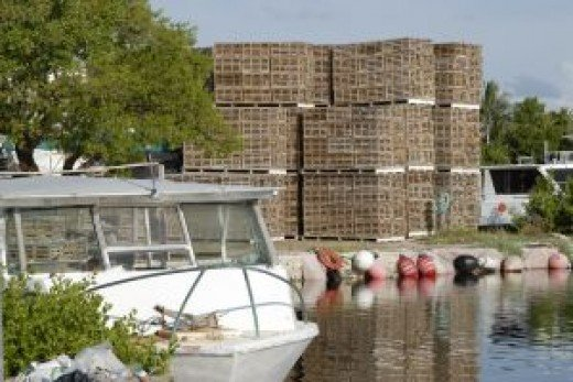 Lobster traps in the Upper Keys.