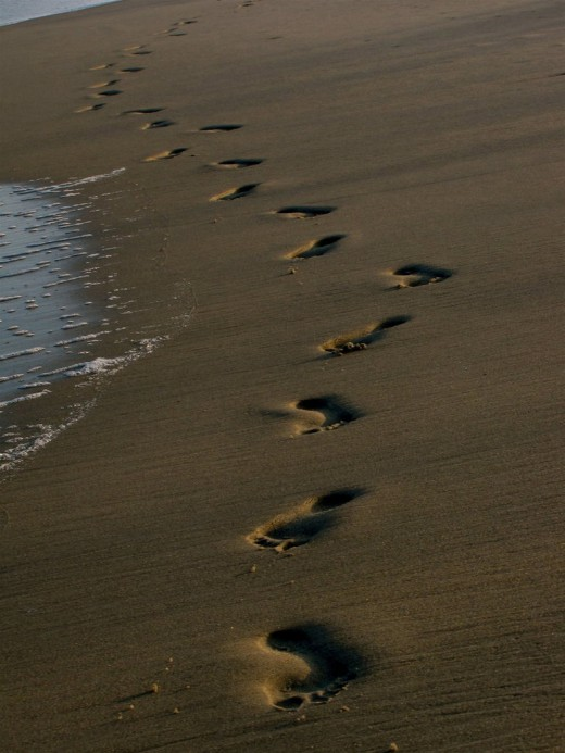 Footprints in the Sand  3 versions 3 authors 1 of the