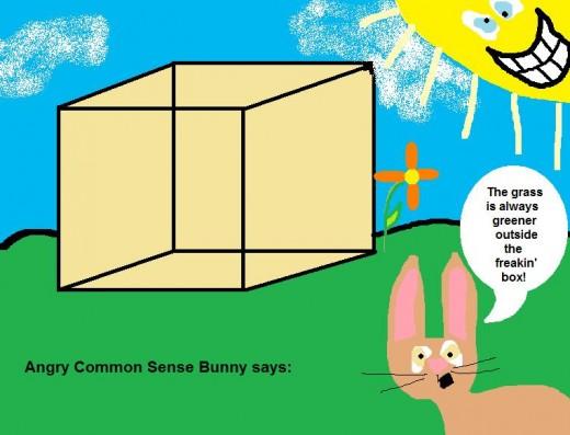 Angry Bunny says: