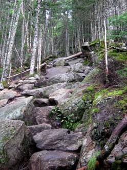 Of Interminable Stones
