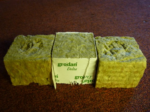 What are Rockwool Cubes?