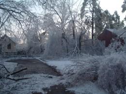 A beautiful and destructive ice storm