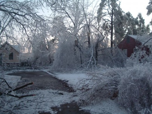 A beautiful and destructive ice storm