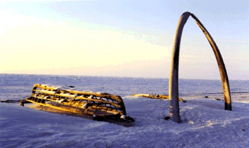 The frame of a wooden, Inuit umiak boat, with whale bones found on the frozen shoreline of the Arctic Ocean at Point Barrow, Alaska. April 1999.