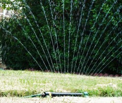7 Ways to Conserve Water During a Drought