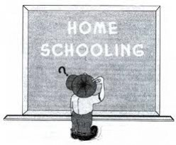 Home Schooling - The Benefits of Learning at Home Versus Traditional Schools