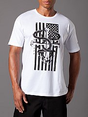 Serpent, wrapped around crossed bones, on top of the american flag...wow.