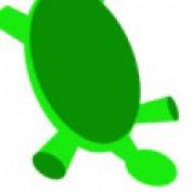 Awkward Turtle profile image