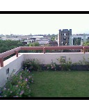 Our Terrace Garden/Roof Garden
