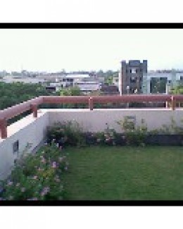 Our Terrace Garden/Roof Garden