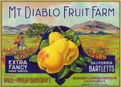 vintage fruit crate labels clip art Pears