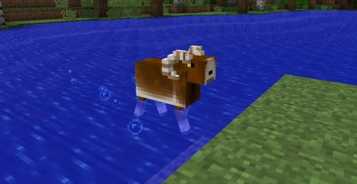 Oh swimming goat, you so random.
