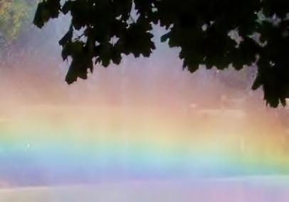 Rainbow of dreams