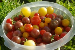 Beautiful, seasonal cherry tomatoes come in a variety of flavors, each with a slightly different sweetness. For this reason, they make the ideal healthy pizza toppings.