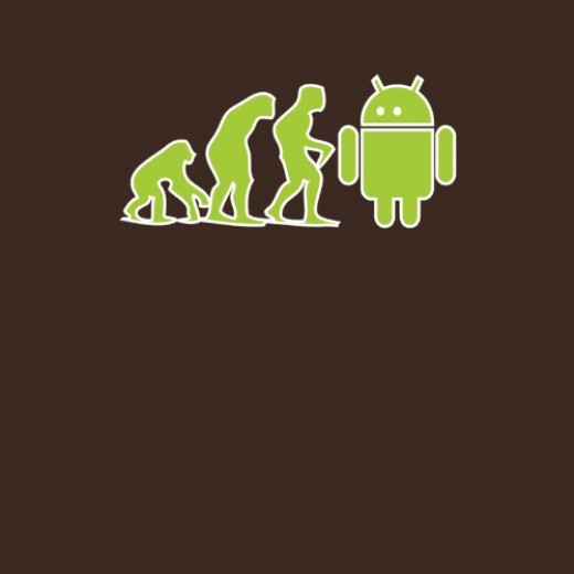 Google Evolution