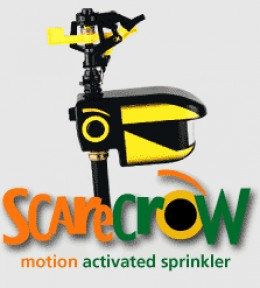 The Scarecrow Sprinkler