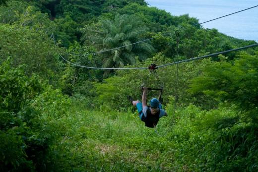 Ziplining over the island's rain forest.