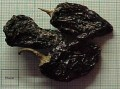 How to make your own chipotles. BBQ smoke your own spicy and smoky backyard peppers