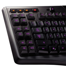 Logitech Gaming Keyboard G110 Macros