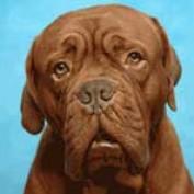 Sue826 profile image