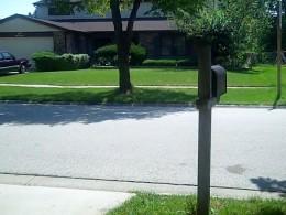 Nice Neighbor