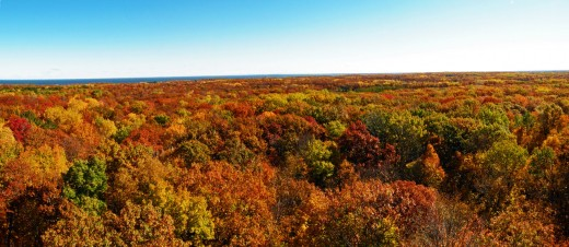 For many Minnesotans, Fall is their favorite time of year. From an aerial view, one can see why as the canopy of the trees is awash with vibrant colors.
