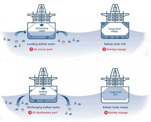 Vessel Ballast Water Tank