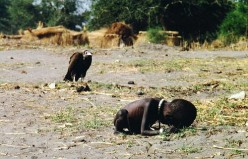 Through the Lens of Humanity: Ethics in the Girl and the Vulture