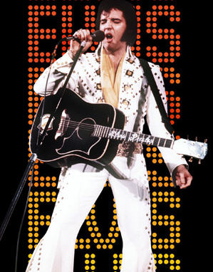 Citizens of Vegas - have you seen this Elvis?