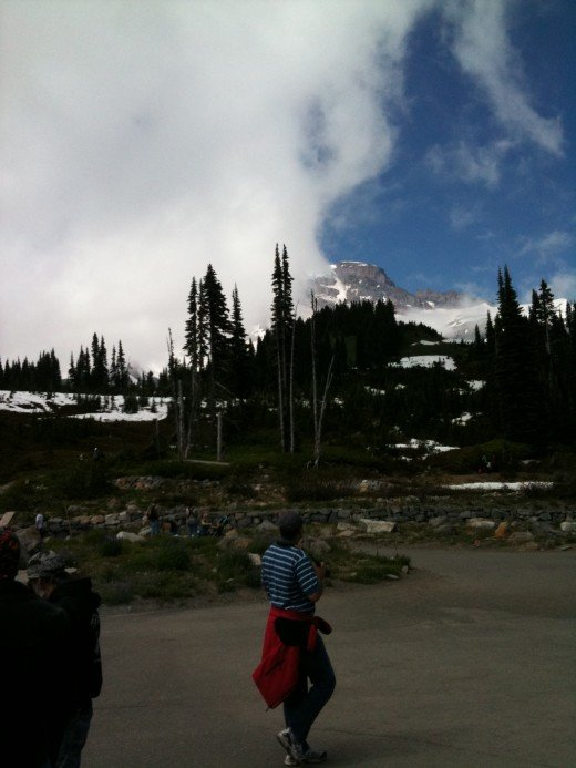 MT. RAINIER WAS BASHFUL THIS DAY