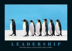 Organizational Leadership - 4 Implications to Consider When Leading Organizational Change