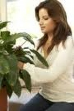 Caring for your house plant is a fun activity!