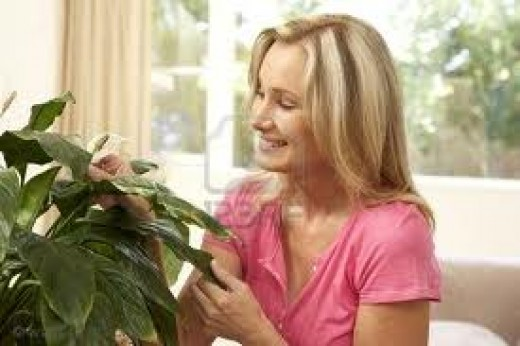 How can you not smile when you are in the company of your beautiful house plant!