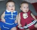 UF Gators, FSU Seminoles, UCF Knights Football - Family Divided