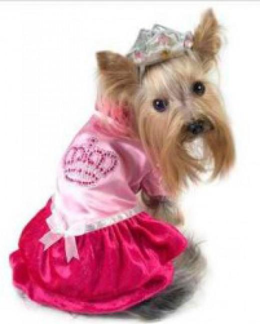 Pink-Royal-Princess-Dog-Costume