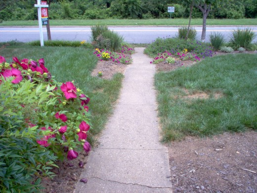 The front walk - July 2006.