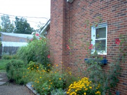 The driveway side - July 2006.