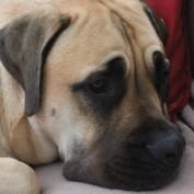 fayx24 profile image