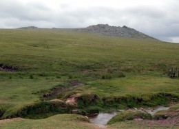 A picture of part of Bodmin Moor