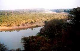 Kuno river and surrounding area (Wildlife Institute of India picture)
