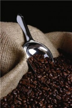 Where Was the First Coffee House Established?