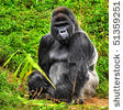 """MY MOTHER HATED THIS ONE: """"ANGRY GORILLA,"""" HE NEVER SPOKE, JUST GROWLED, GRUNTED AND BROKE STUFF IN THE HOUSE."""