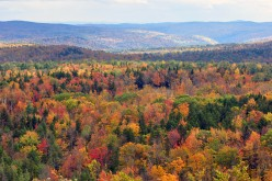 Vermont's Amazing Fall Colors -- Don't Let Hurricane Irene Spoil Your Trip!