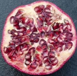 Cross-section of a pomegranate