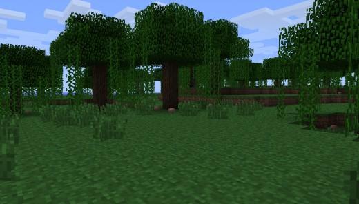 New Jungle Biome!